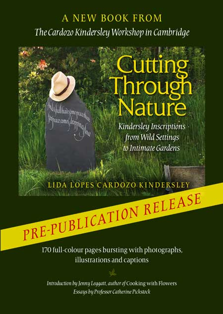 Photo of Cutting through Nature book